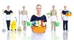 professional cleaning companies